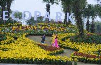 Văn Phòng Tư Vấn, Mua Bán Bất Động Sản – KĐT Ecopark