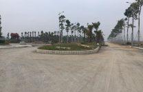 Cần Tiền Bán Lô Đất tại Khu Đô Thị Hòa Phát Phố Nối Thị xã Mỹ Hào